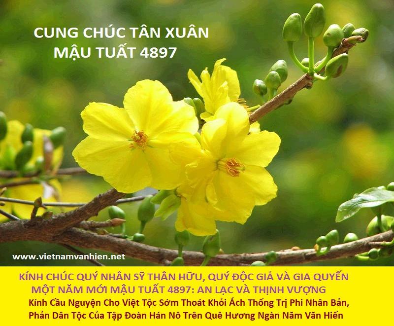 CungChucTanXuan4897